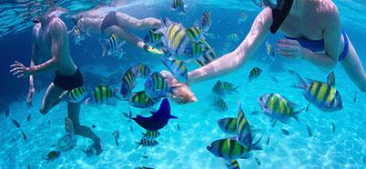 experto indio deportes acuáticos